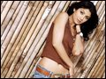 shilpa shetty wallpapers037